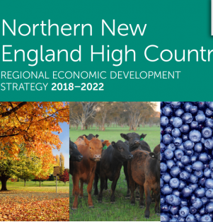 Regional Economic Development Strategic Plans